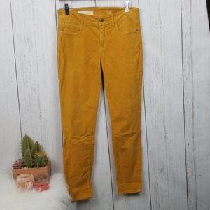 Pilcro  and the Letterpress Corduroy pants size 27